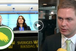 Gustav Fridolin,  Miljörpartiet,  n24video