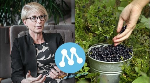 plocka bär, Elisabeth Svantesson, Moderaterna