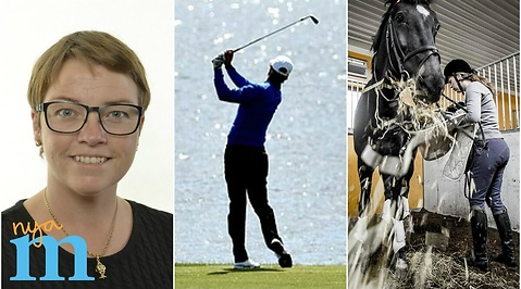 Hästar, Moderaterna, Golf, Ridning