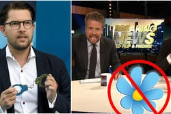 Fillip och Fredrik, Breaking news,  n24video, Sverigedemokraterna, SD, Politik