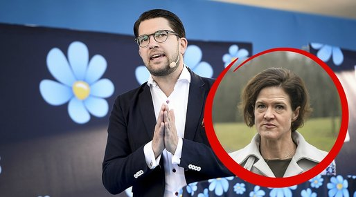 Moderaterna, Sverigedemokraterna