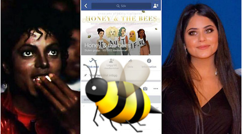 honey and the bees, lina taha, Facebook