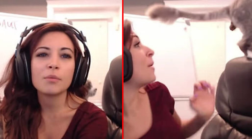 Alinity Divine, WOW, Gaming, Stream