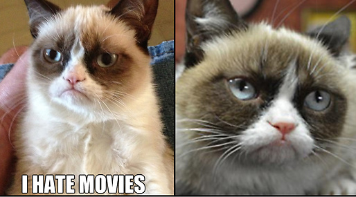mem, Film, Grumpy Cat, Producent, Internet, Hollywood